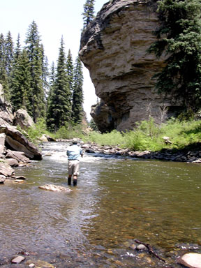 Colorado springs fly fishing life style by for Fishing lakes in colorado springs