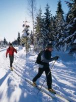 cross-country-skiing-01b
