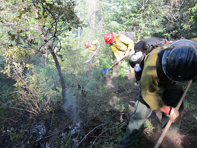 Firefighters digging line around the Fawn Gulch Fire - acemergency.org