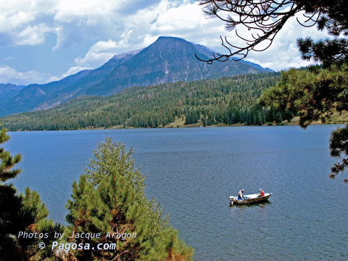 Williams lake fishing pagosa springs colorado for Fishing lakes in colorado springs