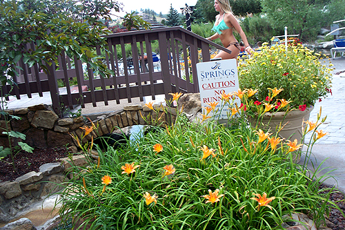 Pagosa springs flowers in full bloom now pagosa great flowers at the pagosa hot springs resort mightylinksfo