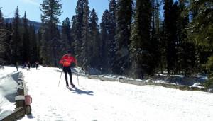 Ready to Ski
